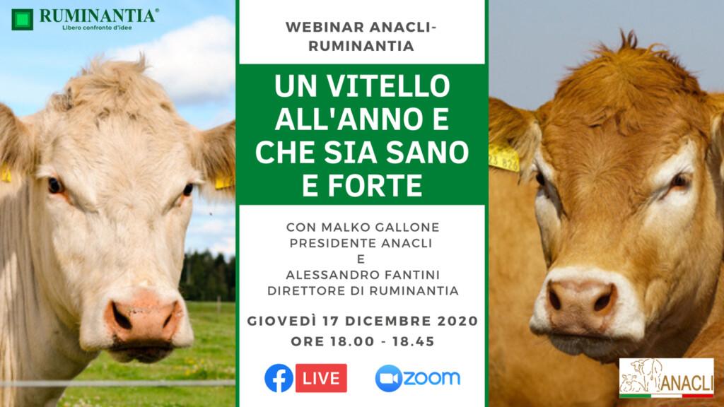 """Webinar ANACLI-Ruminantia """"Un vitello all'anno e che sia sano e forte"""""""