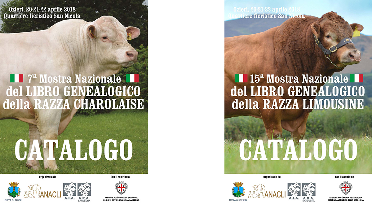 Mostra nazionale del Libro Genealogico della razza Charolaise e della razza Limousine - Ozieri (SS)